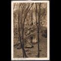http://morawino-stamps.com/sklep/11935-large/pocztowka-p-271-rok-1933-park-miejski-las-wolski-stempel-okoliczn-statua-matki-boskiej-na-panieskich-skalach.jpg