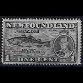 http://morawino-stamps.com/sklep/1221-thickbox/kolonie-bryt-new-foundland-221a.jpg