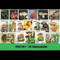 http://morawino-stamps.com/sklep/3446-large/pakiet-grzyby-50-szt-znaczkow.jpg