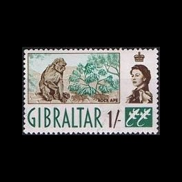 http://morawino-stamps.com/sklep/772-thickbox/kolonie-bryt-gibraltar-158.jpg